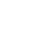 Wehring & Wolfes